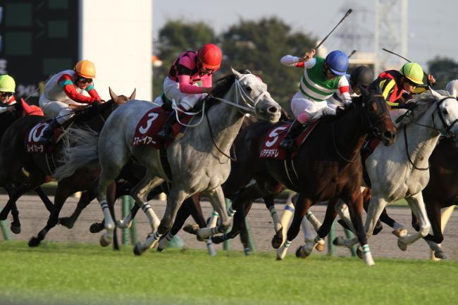 2014 府中牝馬S2