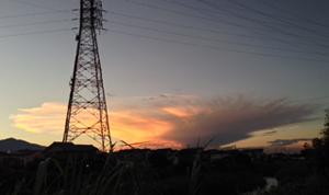 kumo_20150722114800843.jpg