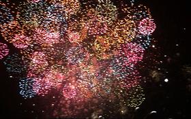 2015年花火大会