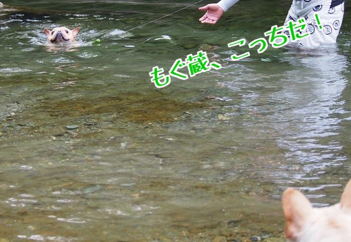 川遊び18