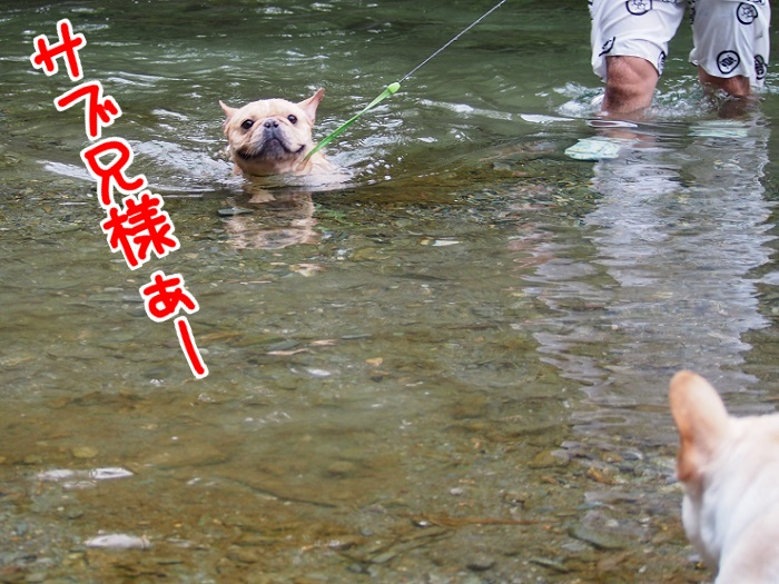 川遊び19