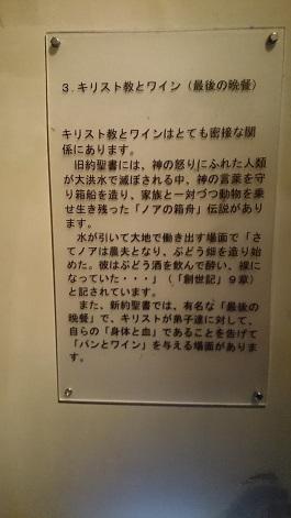 DSC_2414-50.jpg