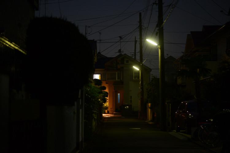 DSC_9268_01.jpg