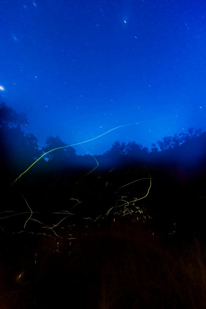 2015.07.14石の湯蛍と星景1