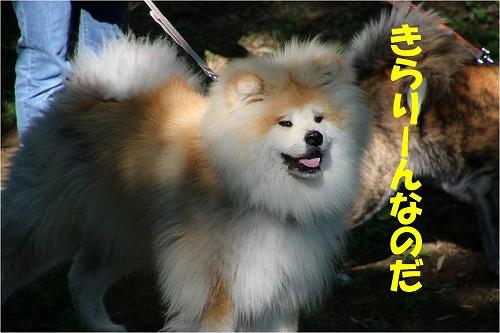 s-150622-8.jpg