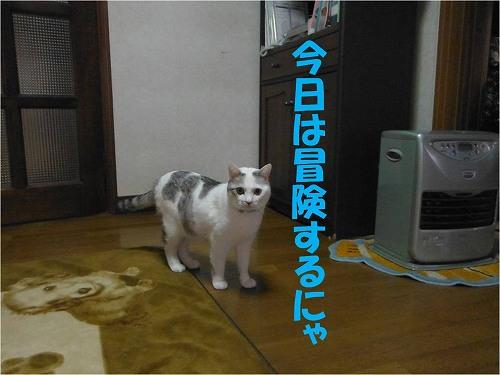 s-150630-1.jpg