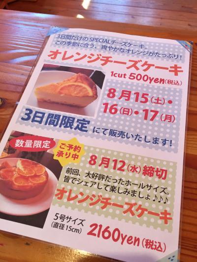 8月オレンジチーズケーキ