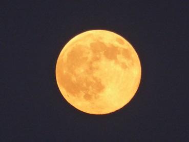 moon150731_0.jpg