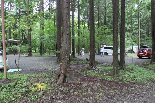 林間サイト2