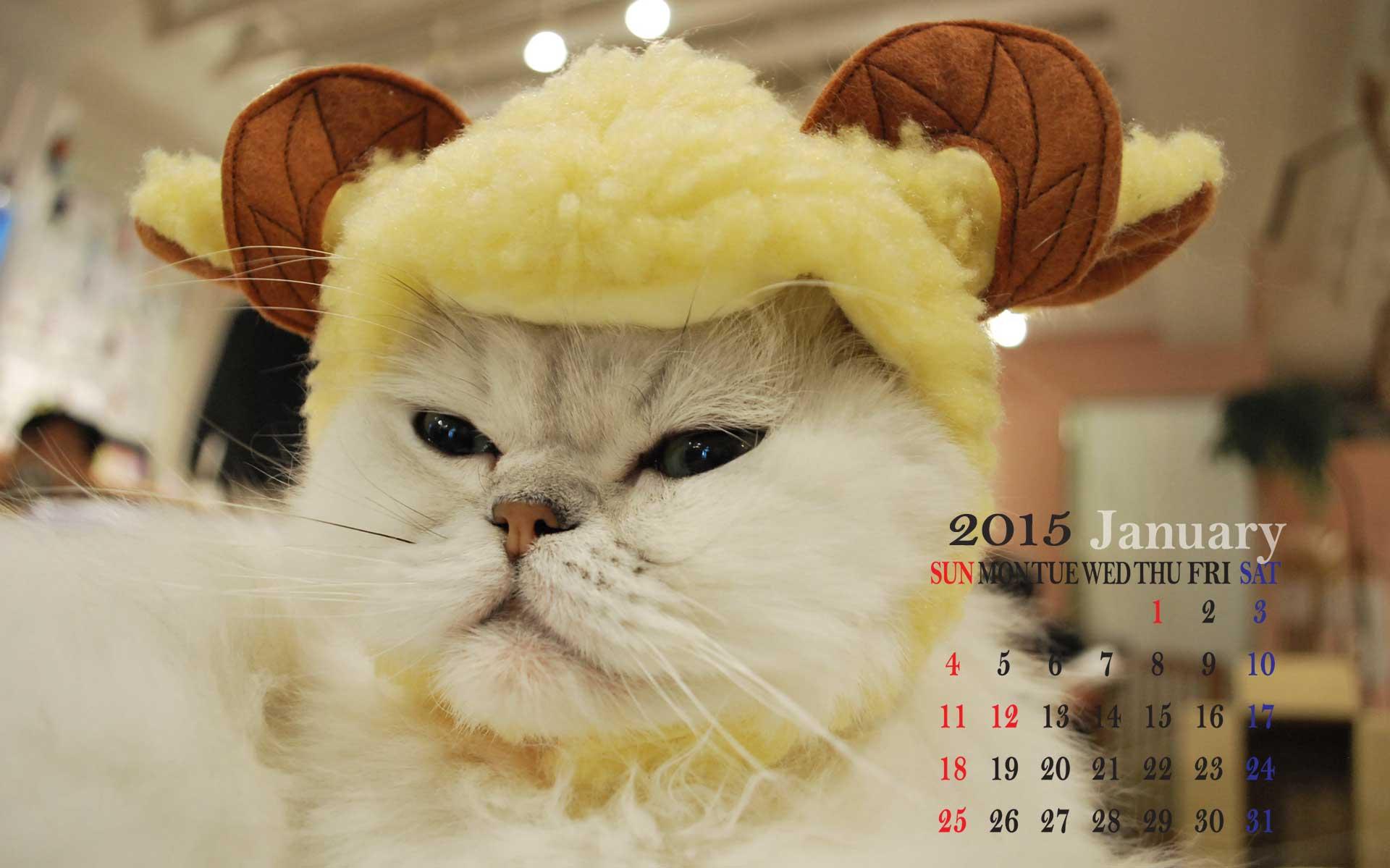 カレンダー カレンダー 2015 一月 : きゃてりあむ にゃんにっき 2015 ...