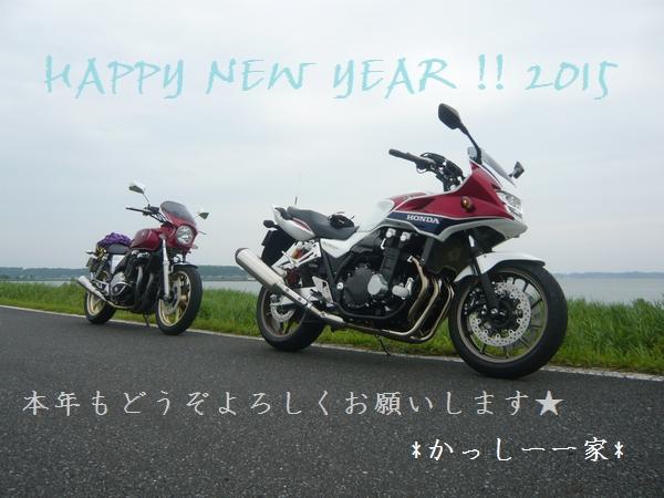 P1100146-1.jpg
