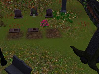 9日目墓地