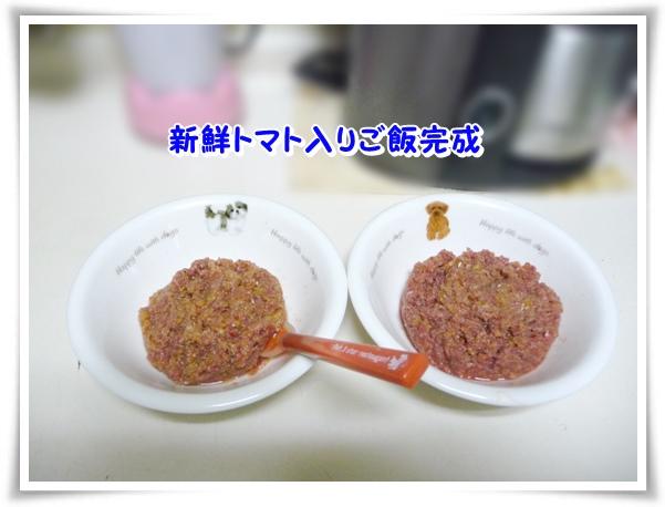 P1110581_1.jpg