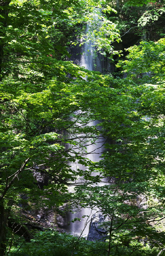 白糸の滝-913