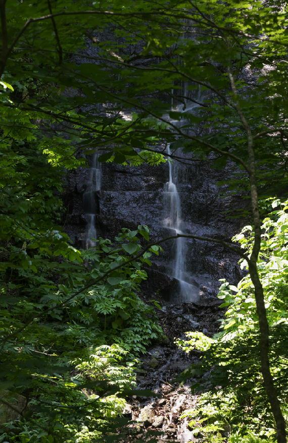 不老の滝-943