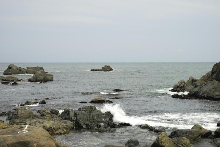 種差海岸-243
