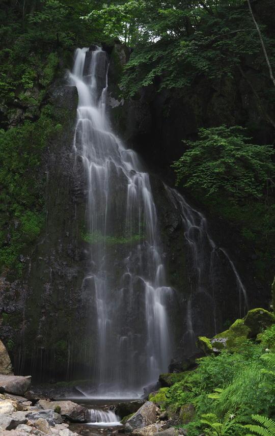 八岳の滝-263-1