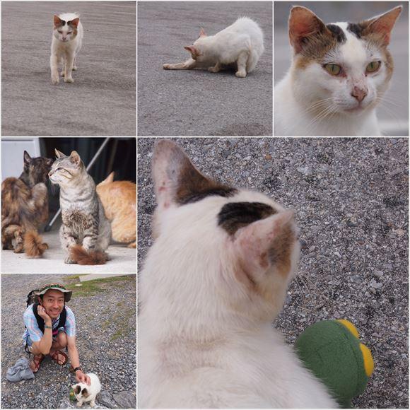 ゆうブログケロブログ沖縄2015 (109)_R
