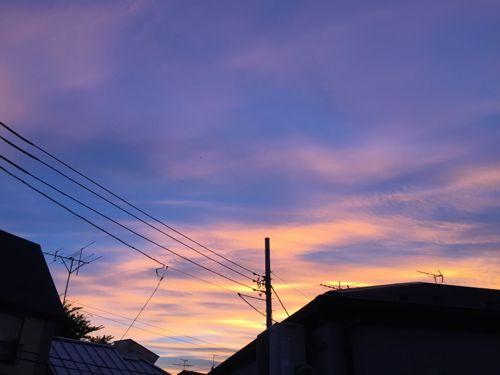 IMG_7554yuyake.jpg