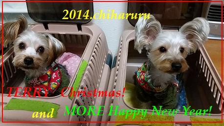 20141225xmas terry more