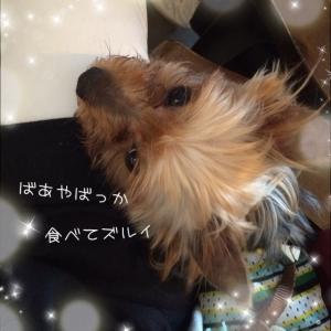 20150710175843e51.jpg