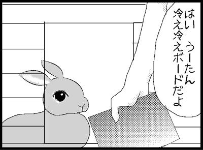 s61.jpg