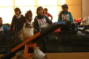kyoutoTT 93611_R