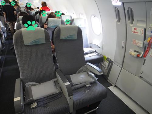 201506EVA_AIR_A321-200-4.jpg