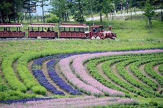 牧歌の里の列車