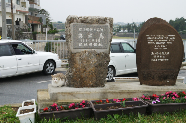 3月okinawa7