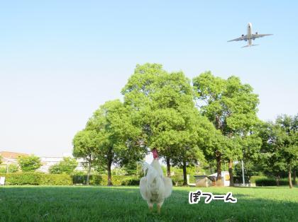 二太2015/08/02-3