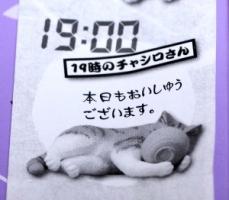 2015 08 09_3457