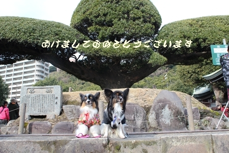 20150103_07b.jpg