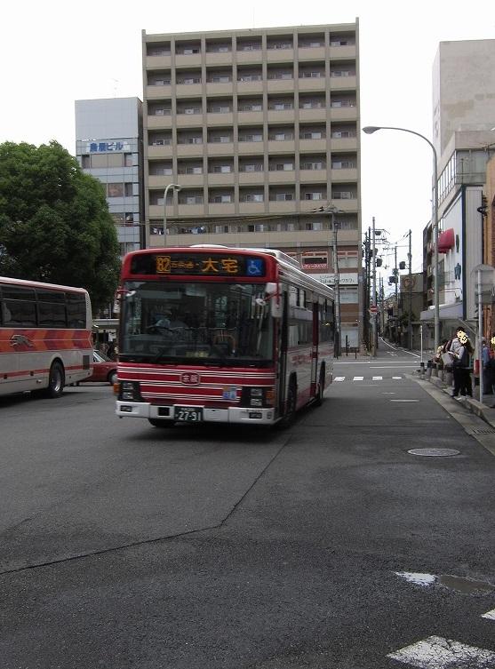 IMG_8175.jpg