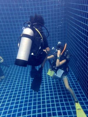 タオ島 ダイビング オープンウォーター