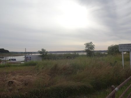 007印旛沼です