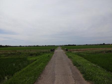 021匝瑳市から旭市と、こんな田園風景の中を走ります
