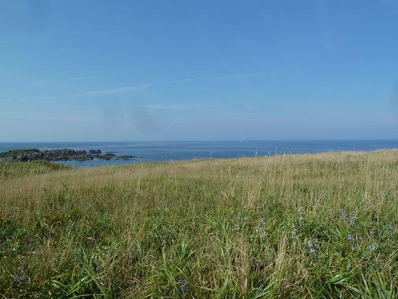 次第に左手には日本海が見えるようになる