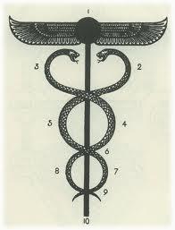 雌雄の蛇と中心柱と鳥