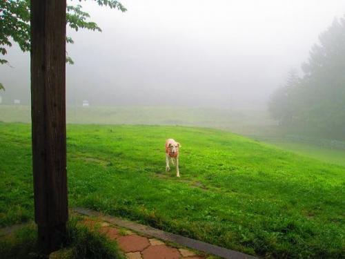 梅雨の空17