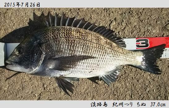 20150726awajishima370.jpg