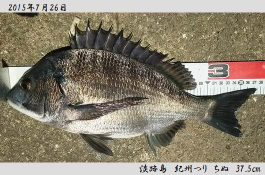 20150726awajishima375.jpg