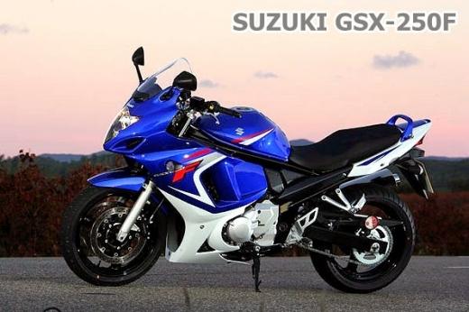 suzuki_gsx250f_02.jpg