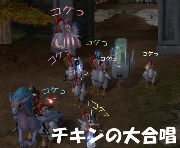 Aion02381.jpg