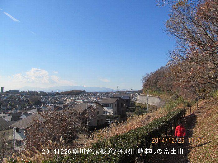 20141226onefiji06.jpg