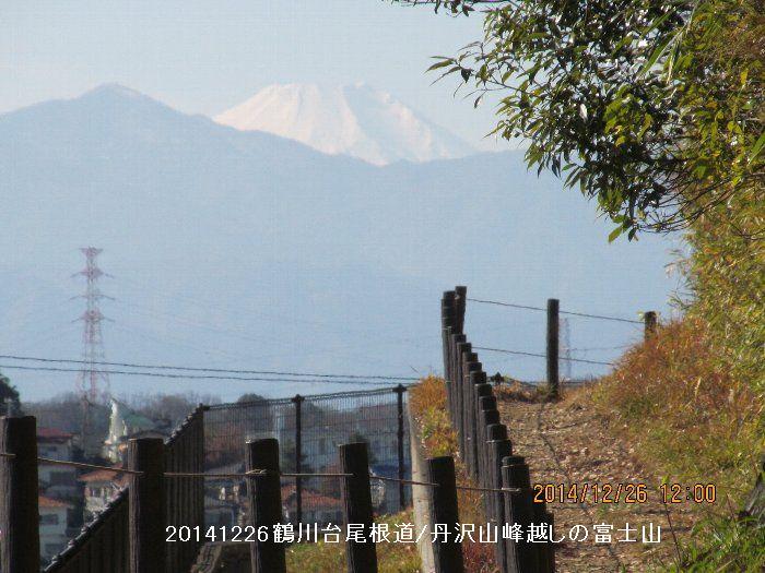 20141226onefiji07.jpg