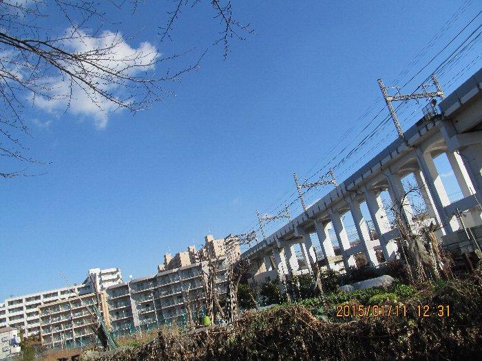 20150111asaokawa08.jpg