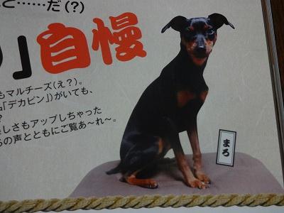 s-雑誌 (1)