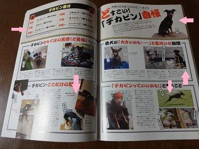 s-雑誌 (6)
