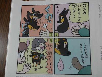 s-雑誌 (8)